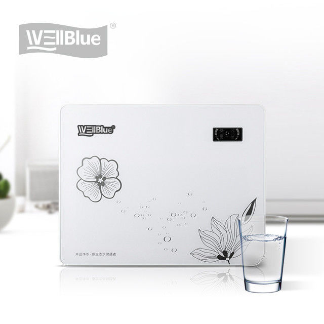 WellBlue Reverse Osmosis Drinking Water Filter System High Performance